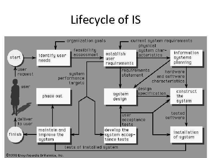 Lifecycle of IS