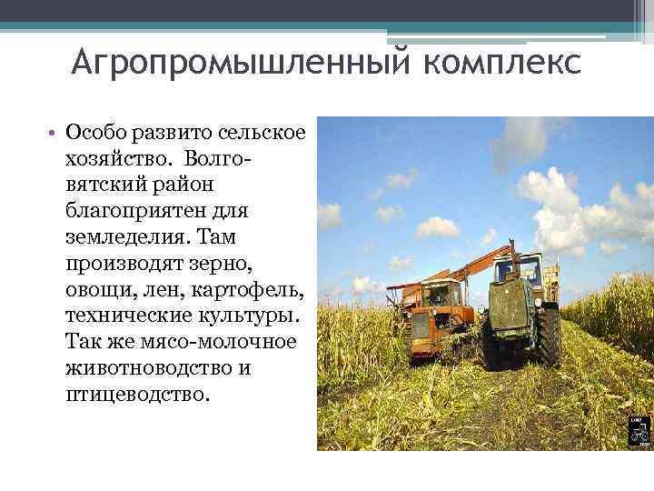 Агропромышленный комплекс • Особо развито сельское хозяйство. Волговятский район благоприятен для земледелия. Там производят