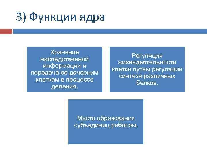 3) Функции ядра Хранение наследственной информации и передача ее дочерним клеткам в процессе деления.
