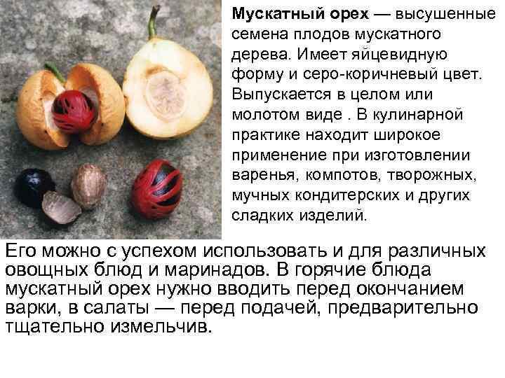 Мускатный орех — высушенные семена плодов мускатного дерева. Имеет яйцевидную форму и серо-коричневый цвет.