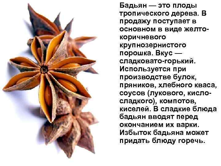 Бадьян — это плоды тропического дерева. В продажу поступает в основном в виде желтокоричневого
