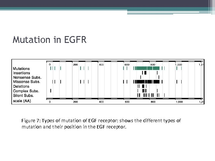 Mutation in EGFR Figure 7: Types of mutation of EGF receptor: shows the different