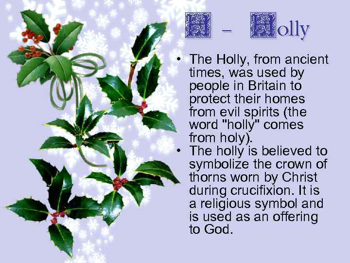 H - Holly • The Holly, from ancient times, was used by people in