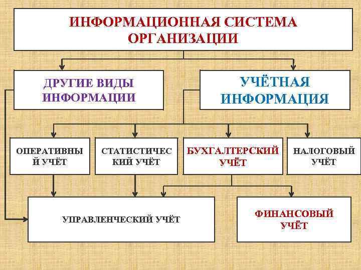 Информационная система бухгалтерии организации электронные библиотека по финансовой отчетности