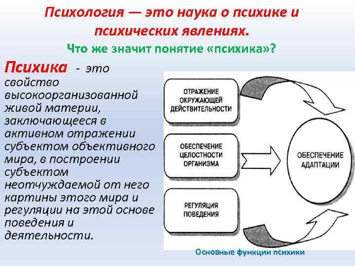 Психология — это наука о психике и психических явлениях. Что же значит понятие «психика»