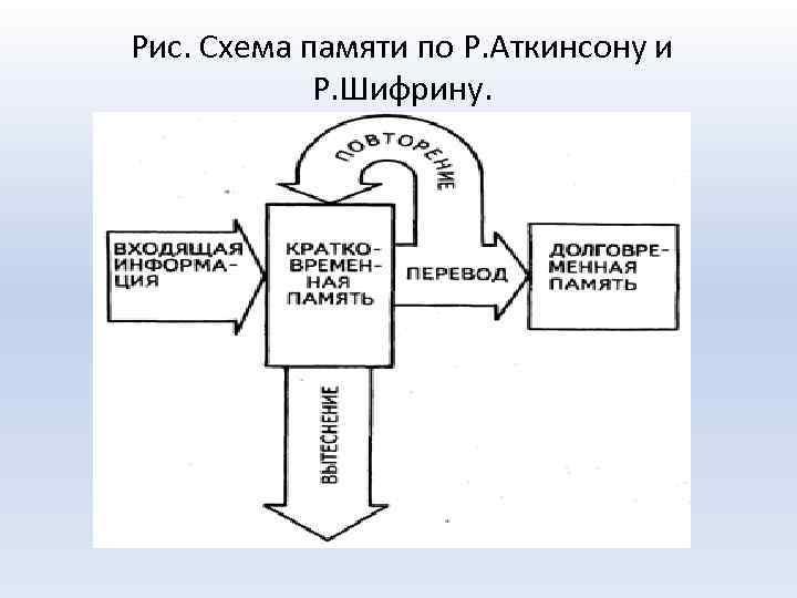 Рис. Схема памяти по Р. Аткинсону и Р. Шифрину.