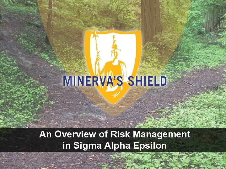 An Overview of Risk Management in Sigma Alpha Epsilon