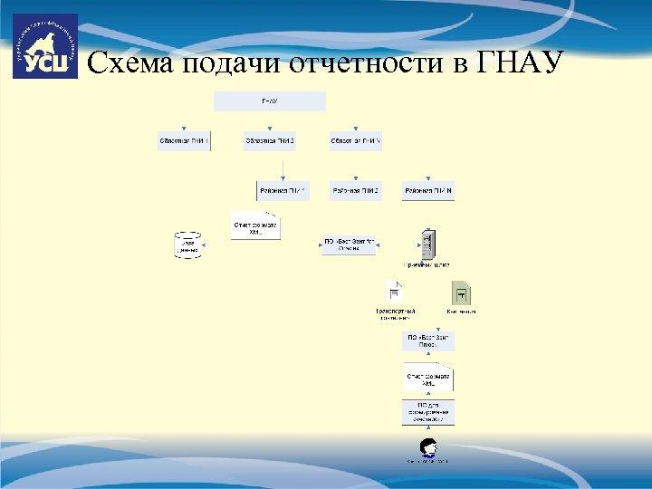 Схема подачи отчетности в ГНАУ