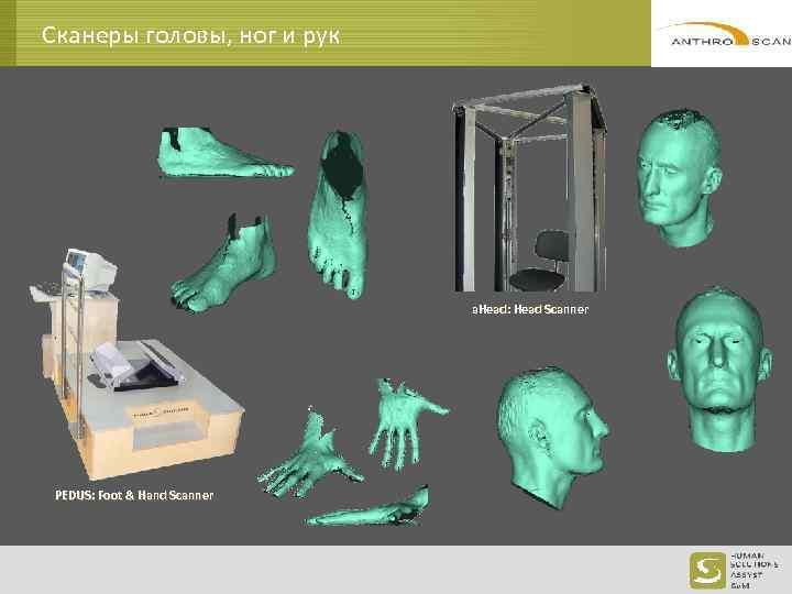 Сканеры головы, ног и рук a. Head: Head Scanner PEDUS: Foot & Hand Scanner