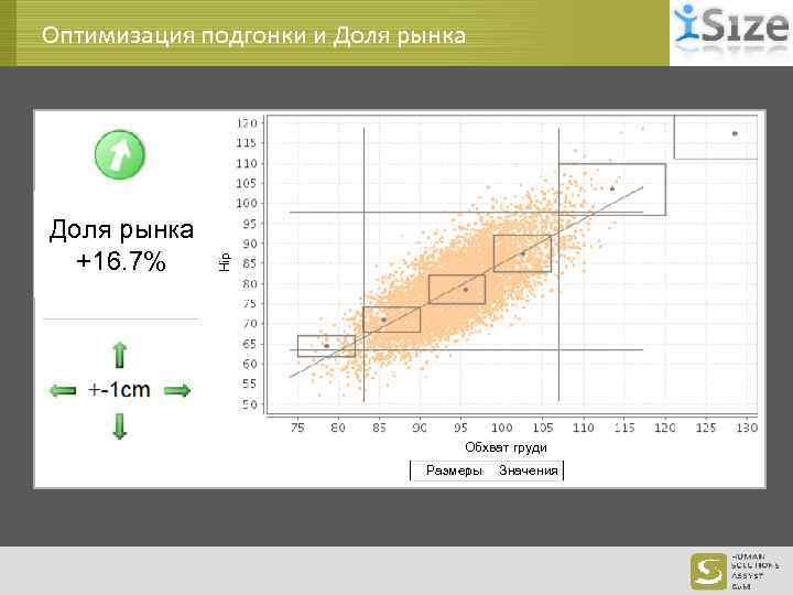 Доля рынка +16. 7% Hip Оптимизация подгонки и Доля рынка Обхват груди Размеры Значения