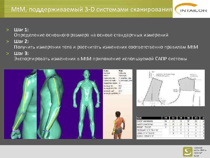Mt. M, поддерживаемый 3 -D системами сканирования > Шаг 1: Определение основного размера на