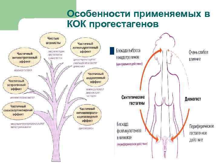 Особенности применяемых в КОК прогестагенов