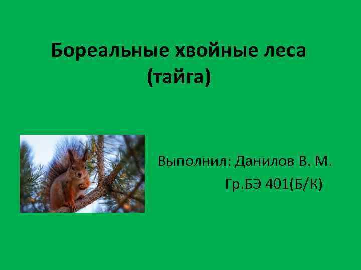 Бореальные хвойные леса (тайга) Выполнил: Данилов В. М. Гр. БЭ 401(Б/К)