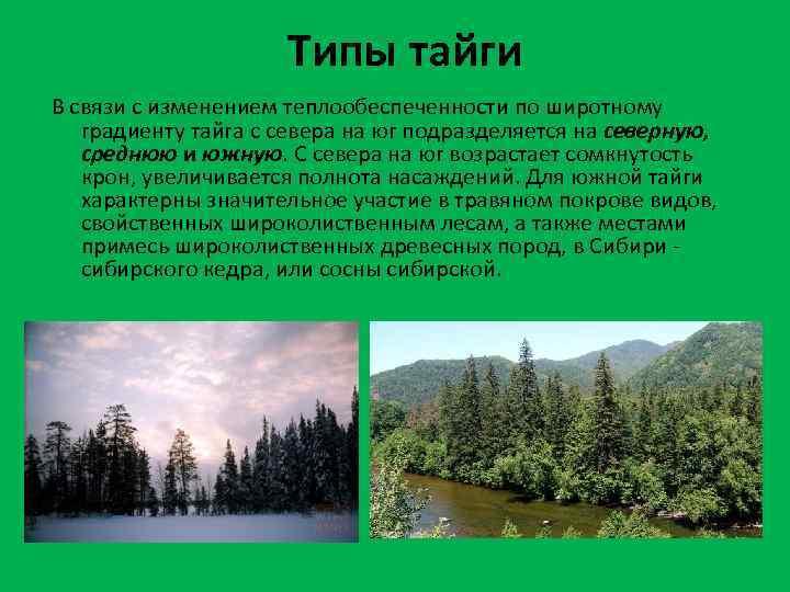 Типы тайги В связи с изменением теплообеспеченности по широтному градиенту тайга с севера на