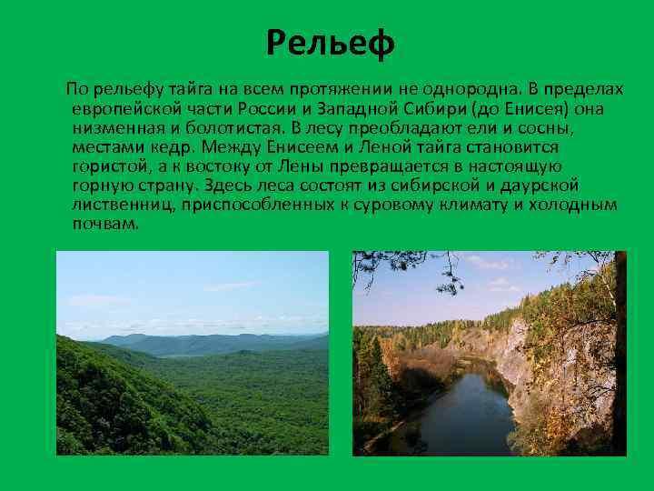Рельеф По рельефу тайга на всем протяжении не однородна. В пределах европейской части России