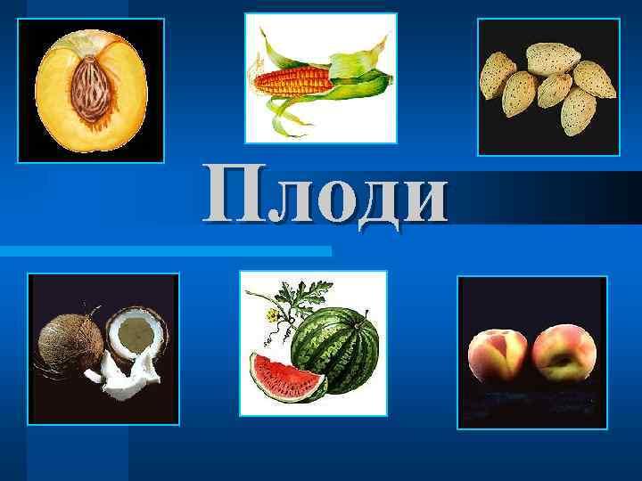 Плоди