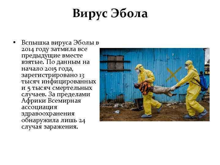 Вирус Эбола • Вспышка вируса Эболы в 2014 году затмила все предыдущие вместе взятые.
