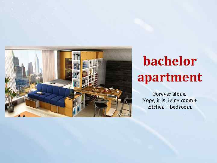bachelor apartment Forever alone. Nope, it is living room + kitchen + bedroom.