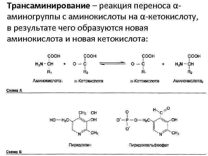 Трансаминирование – реакция переноса αаминогруппы с аминокислоты на α-кетокислоту, в результате чего образуются новая