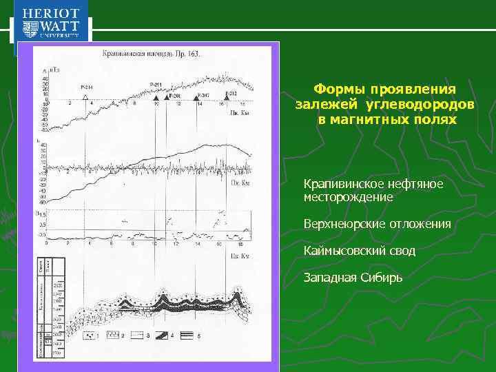 Формы проявления залежей углеводородов в магнитных полях Крапивинское нефтяное месторождение Верхнеюрские отложения Каймысовский свод