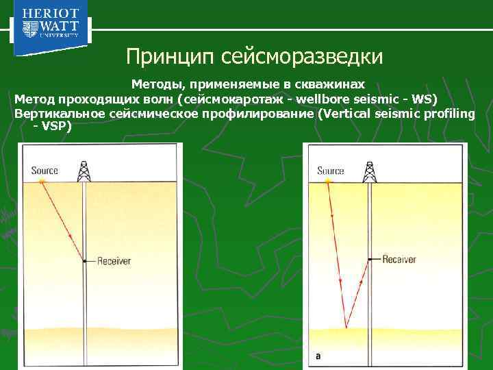 Принцип сейсморазведки Методы, применяемые в скважинах Метод проходящих волн (сейсмокаротаж - wellbore seismic -