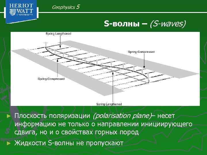 Geophysics 5 S-волны – (S-waves) ► Плоскость поляризации (polarisation plane)– несет информацию не только