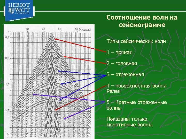 Соотношение волн на сейсмограмме Типы сейсмических волн: 1 – прямая 2 – головная 3