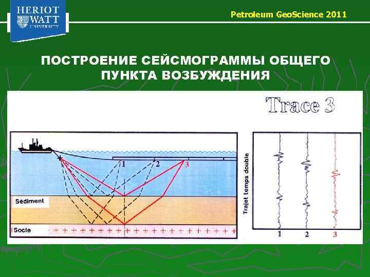 Petroleum Geo. Science 2011 ПОСТРОЕНИЕ СЕЙСМОГРАММЫ ОБЩЕГО ПУНКТА ВОЗБУЖДЕНИЯ