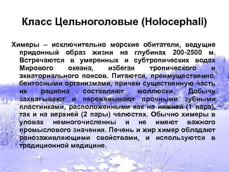 Класс Цельноголовые (Holocephali) Химеры – исключительно морские обитатели, ведущие придонный образ жизни на глубинах