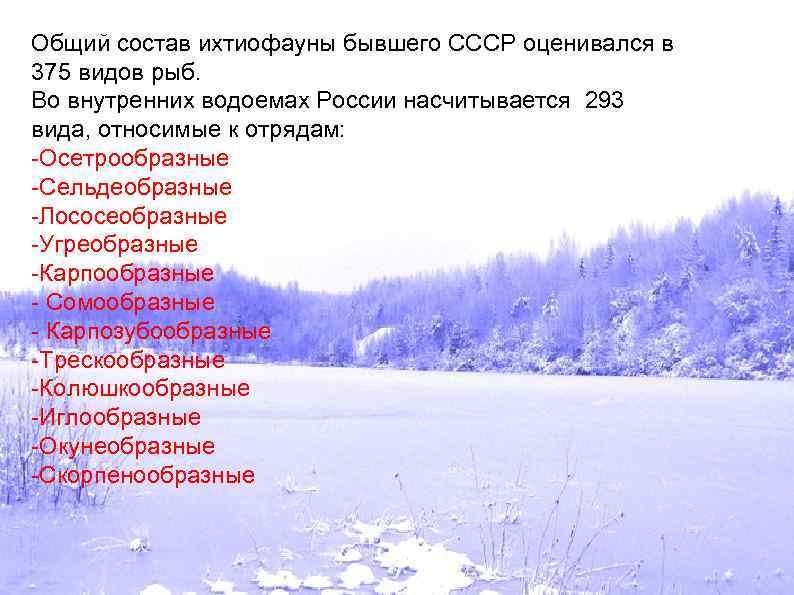 Общий состав ихтиофауны бывшего СССР оценивался в 375 видов рыб. Во внутренних водоемах России
