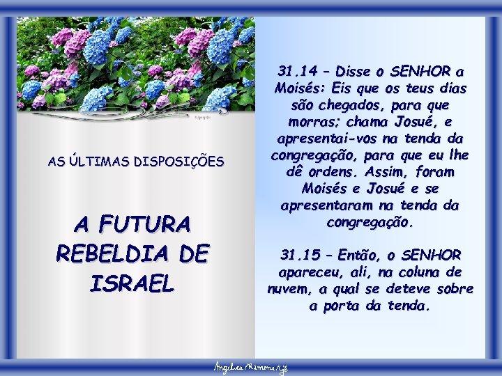 AS ÚLTIMAS DISPOSIÇÕES A FUTURA REBELDIA DE ISRAEL 31. 14 – Disse o SENHOR