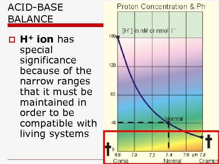 ACID-BASE BALANCE o H+ ion has special significance because of the narrow ranges that