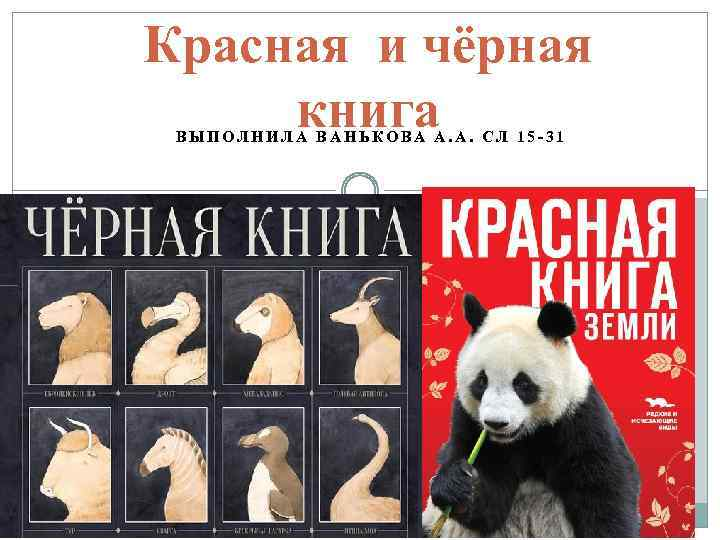 Красная и чёрная книга ВЫПОЛНИЛА ВАНЬКОВА А. А. СЛ 15 -31
