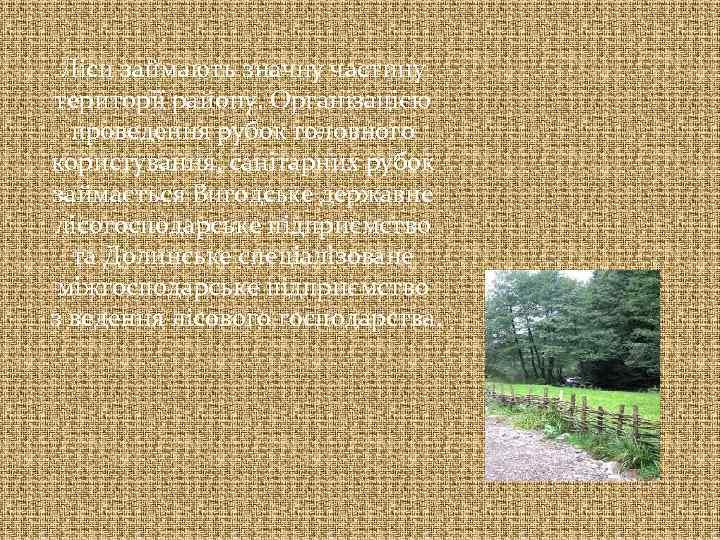 Ліси займають значну частину території району. Організацією проведення рубок головного користування, санітарних рубок займається