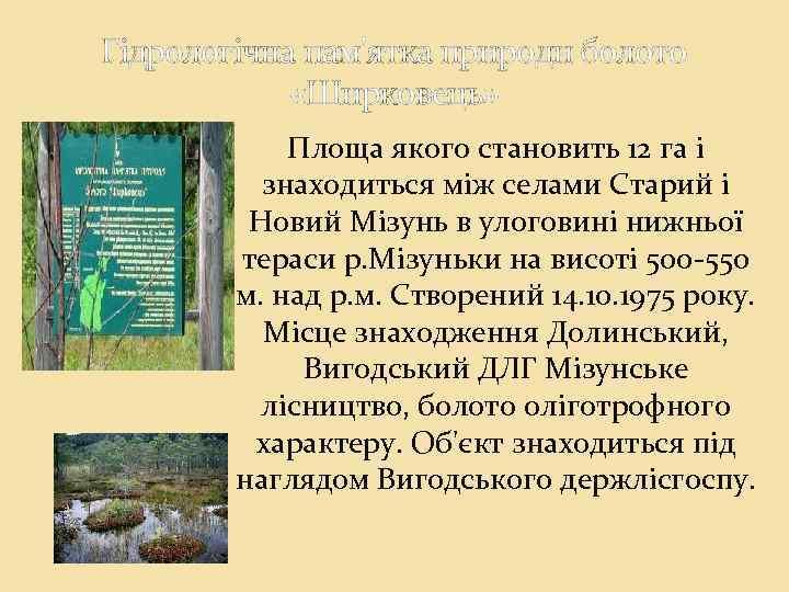 Гідрологічна пам'ятка природи болото «Ширковець» Площа якого становить 12 га і знаходиться між селами