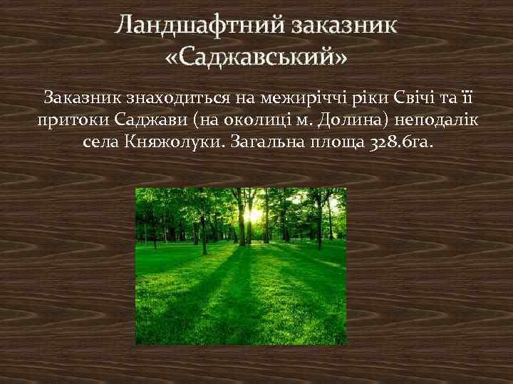 Ландшафтний заказник «Саджавський» Заказник знаходиться на межиріччі ріки Свічі та її притоки Саджави (на