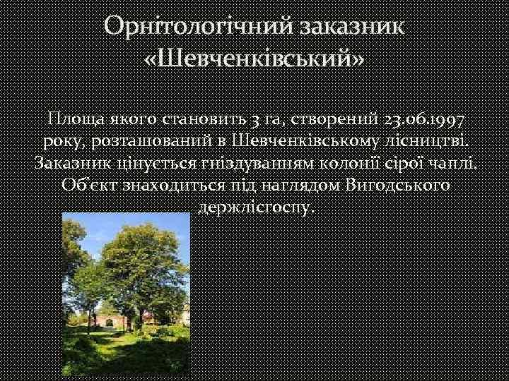 Орнітологічний заказник «Шевченківський» Площа якого становить 3 га, створений 23. 06. 1997 року, розташований
