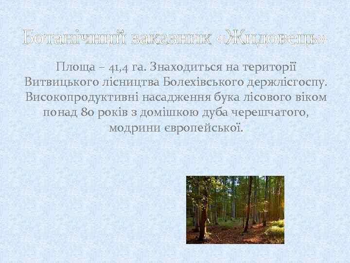 Ботанічний заказник «Жидовець» Площа – 41, 4 га. Знаходиться на території Витвицького лісництва Болехівського