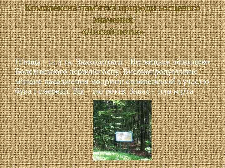 Комплексна пам'ятка природи місцевого значення «Лисий потік» Площа – 14, 4 га. Знаходиться –