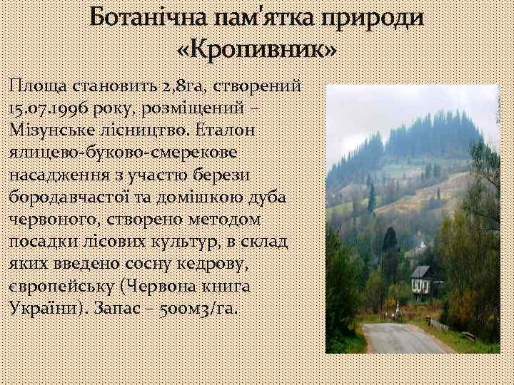 Ботанічна пам'ятка природи «Кропивник» Площа становить 2, 8 га, створений 15. 07. 1996 року,