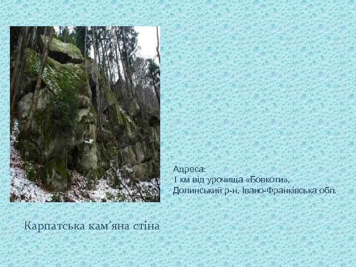 Адреса: 1 км від урочища «Бовкоти» , Долинський р-н, Івано-Франківська обл. Карпатська кам'яна стіна