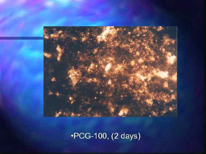 • PCG-100, (2 days)