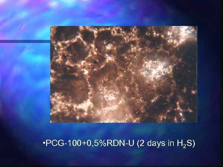 • PCG-100+0, 5%RDN-U (2 days in H 2 S)