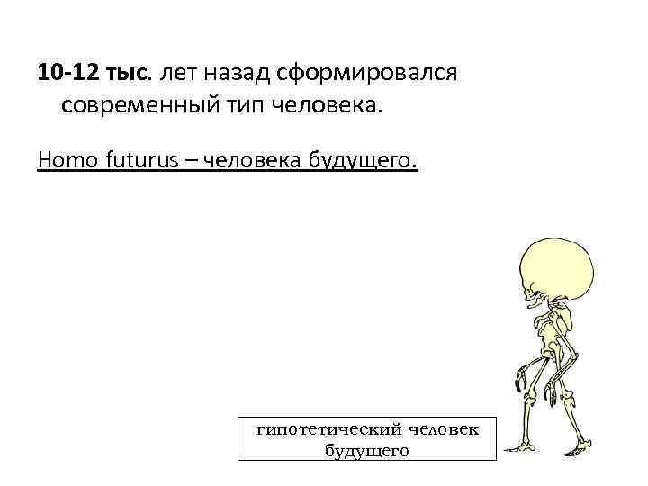 10 -12 тыс. лет назад сформировался современный тип человека. Homo futurus – человека будущего.