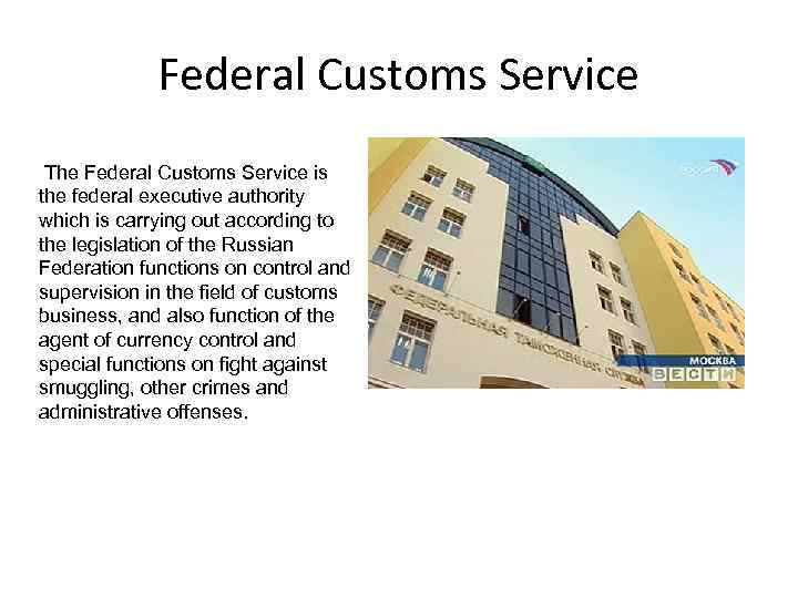 Federal Customs Service The Federal Customs Service is the federal executive authority which is