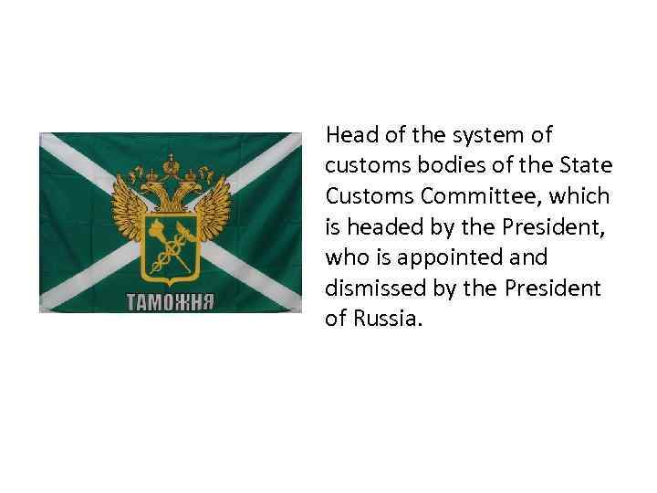 Head of the system of customs bodies of the State Customs Committee, which is