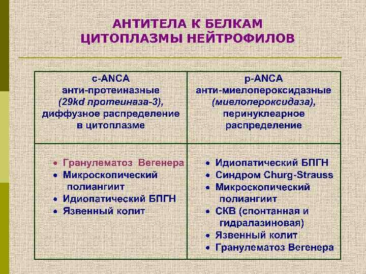 АНТИТЕЛА К БЕЛКАМ ЦИТОПЛАЗМЫ НЕЙТРОФИЛОВ