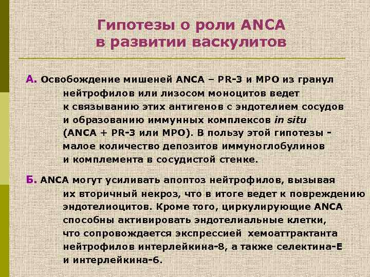 Гипотезы о роли ANCA в развитии васкулитов А. Освобождение мишеней ANCA – PR-3 и