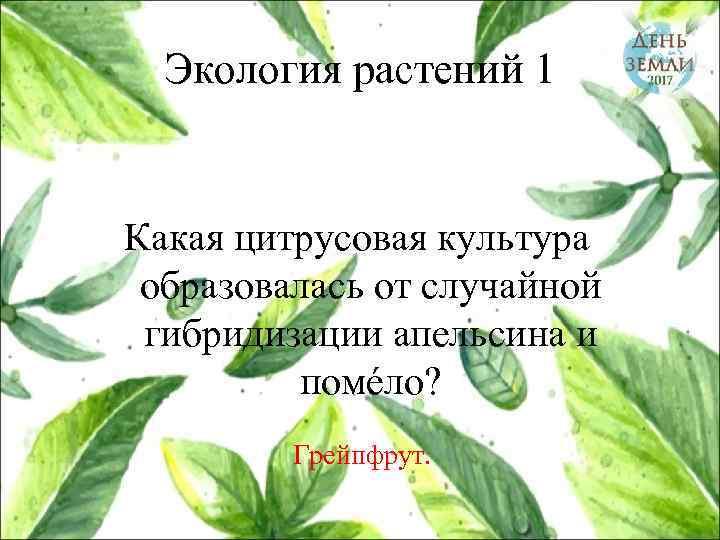Экология растений 1 Какая цитрусовая культура образовалась от случайной гибридизации апельсина и помéло? Грейпфрут.