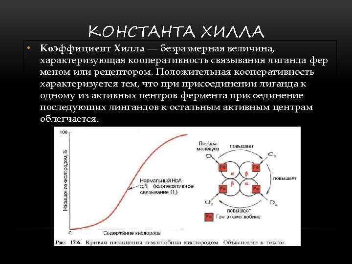 КОНСТАНТА ХИЛЛА • Коэффициент Хилла — безразмерная величина, характеризующая кооперативность связывания лиганда фер меном
